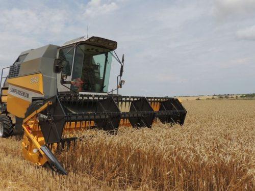 У Херсоні представили програми підтримки для аграріїв