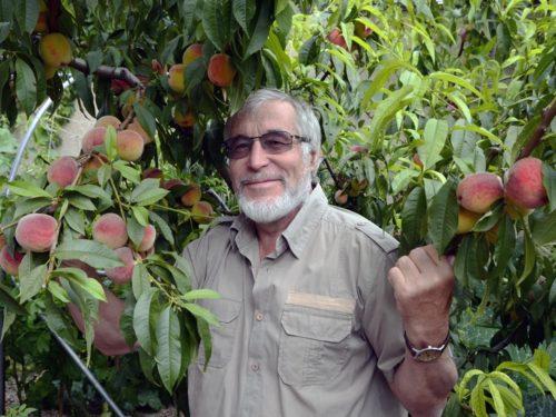 Чи можливе органічне землеробство на Херсонщині?